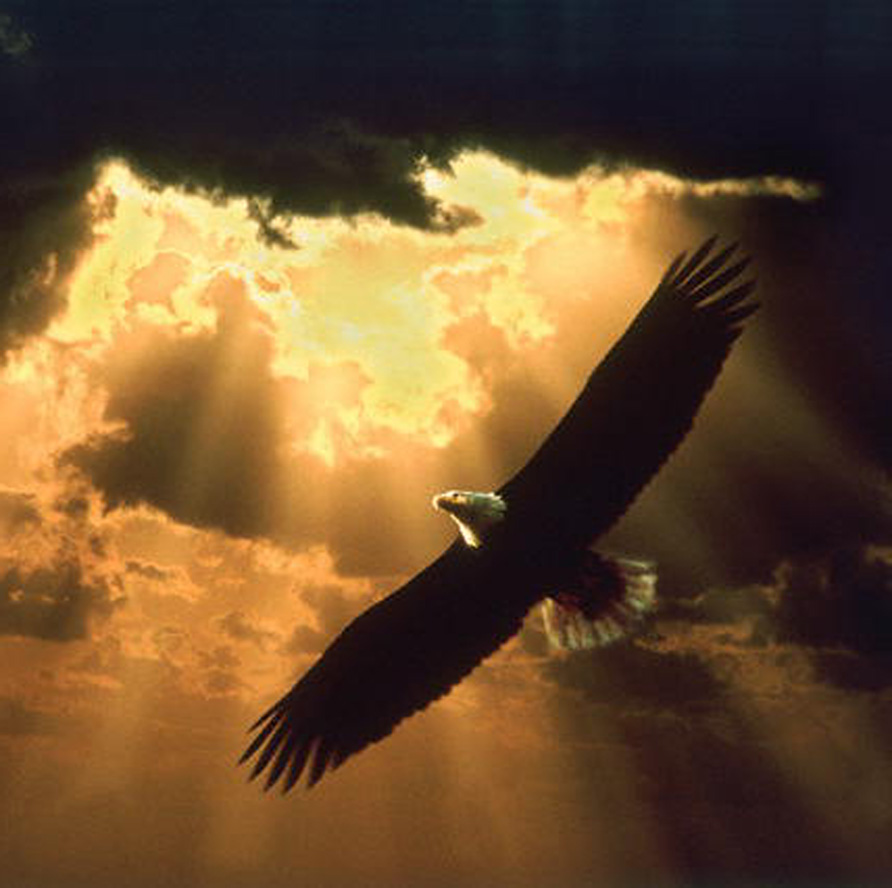 God As Our Mother Eagle Goodness Of God Ministries