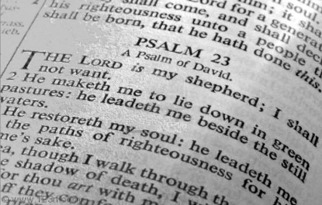 23-psalm1